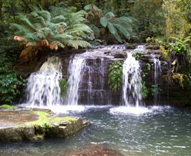 Barrington Tops National Park Walks - Accommodation Mt Buller