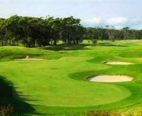 Shoalhaven Heads Golf Club - Accommodation Mt Buller