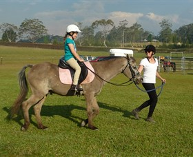 Port Macquarie Horse Riding Centre - Accommodation Mt Buller