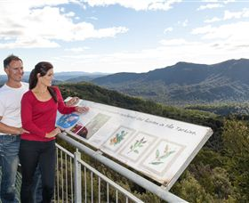 Whyte Hills Lookout - Accommodation Mt Buller