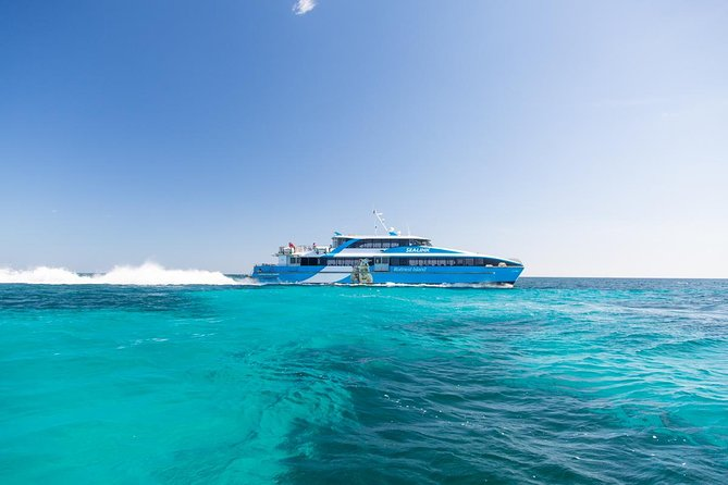 Fremantle to Rottnest Island Roundtrip Ferry Ticket - Accommodation Mt Buller