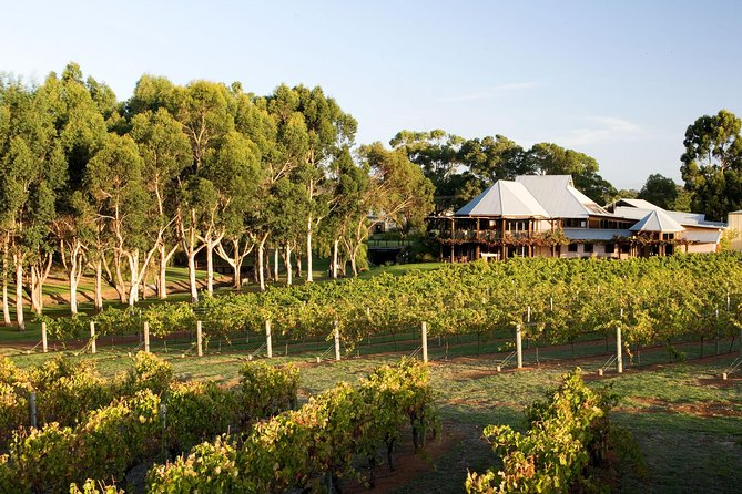 Margaret River and Geographe Bay Region Day Trip from Perth - Accommodation Mt Buller