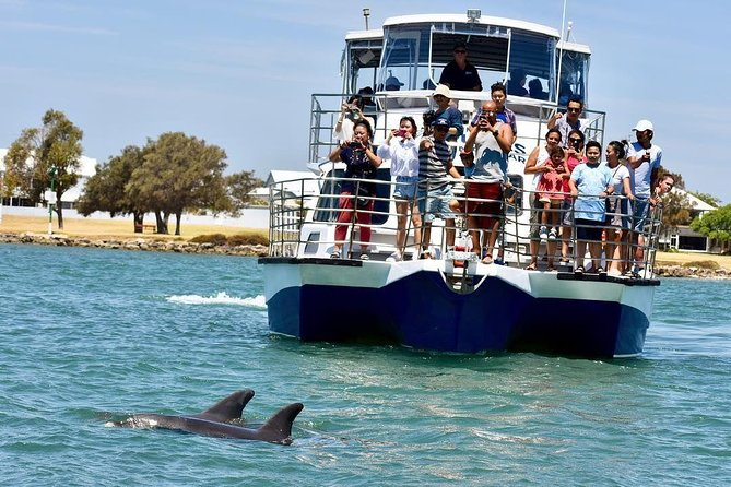 Mandurah Dolphin and Scenic Canal Cruise - Accommodation Mt Buller
