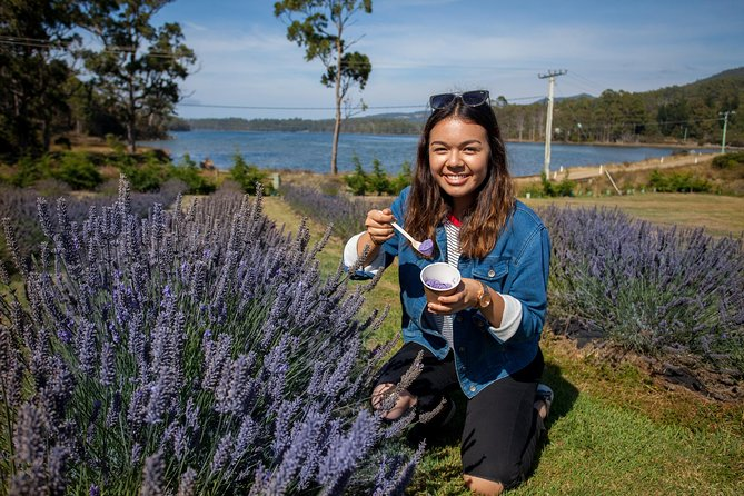 Port Arthur and Lavender Farm Active Day Tour - Accommodation Mt Buller