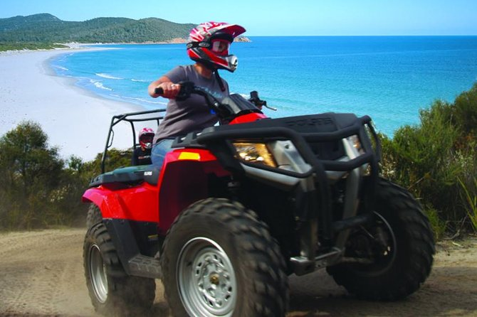Half-Day Guided ATV Exploration Tour from Coles Bay - Accommodation Mt Buller