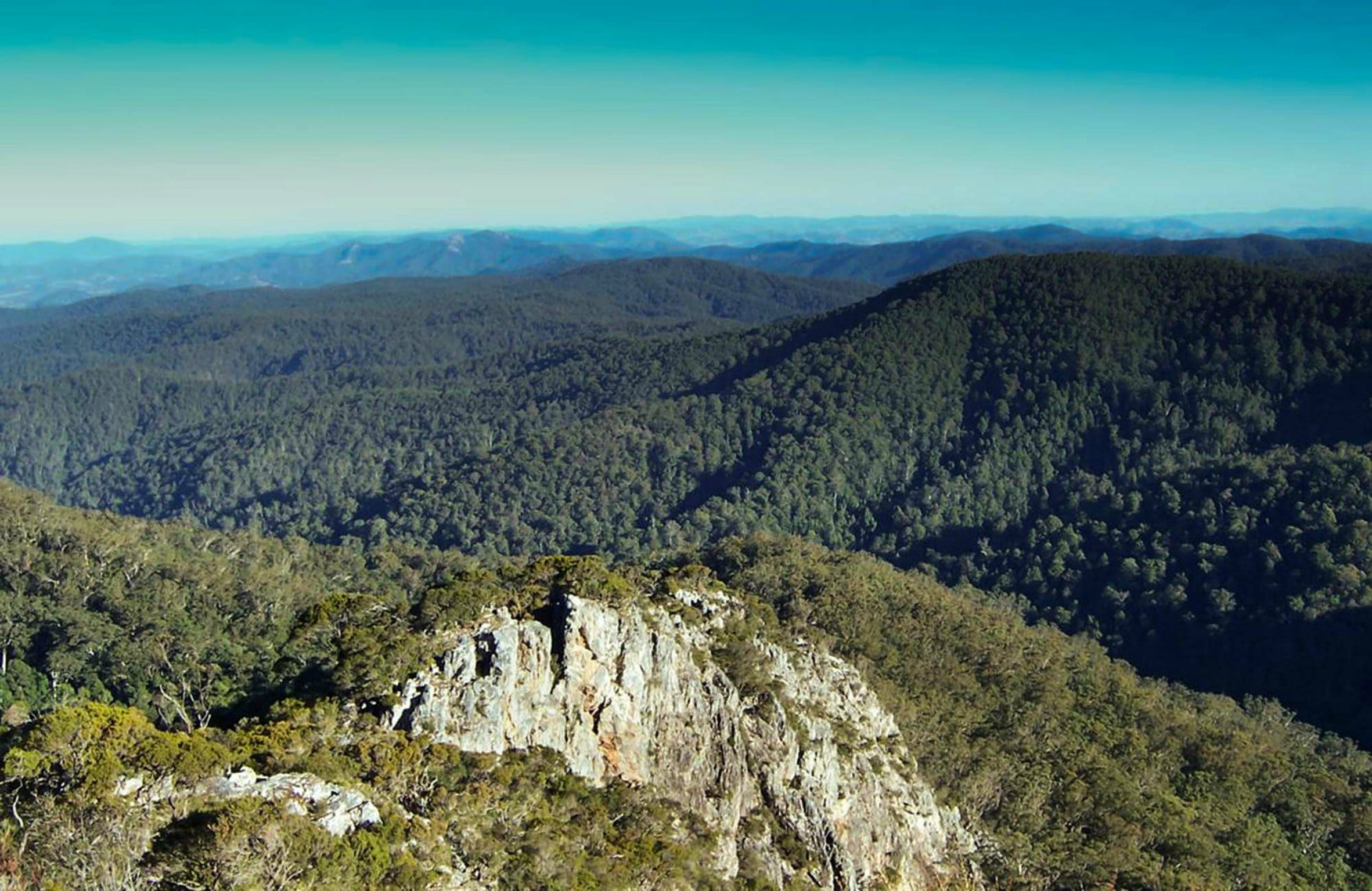 Tapin Tops National Park - Accommodation Mt Buller