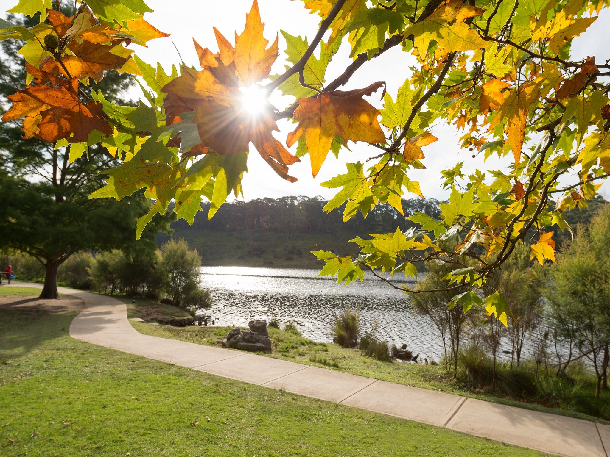 Wentworth Falls Lake - Accommodation Mt Buller