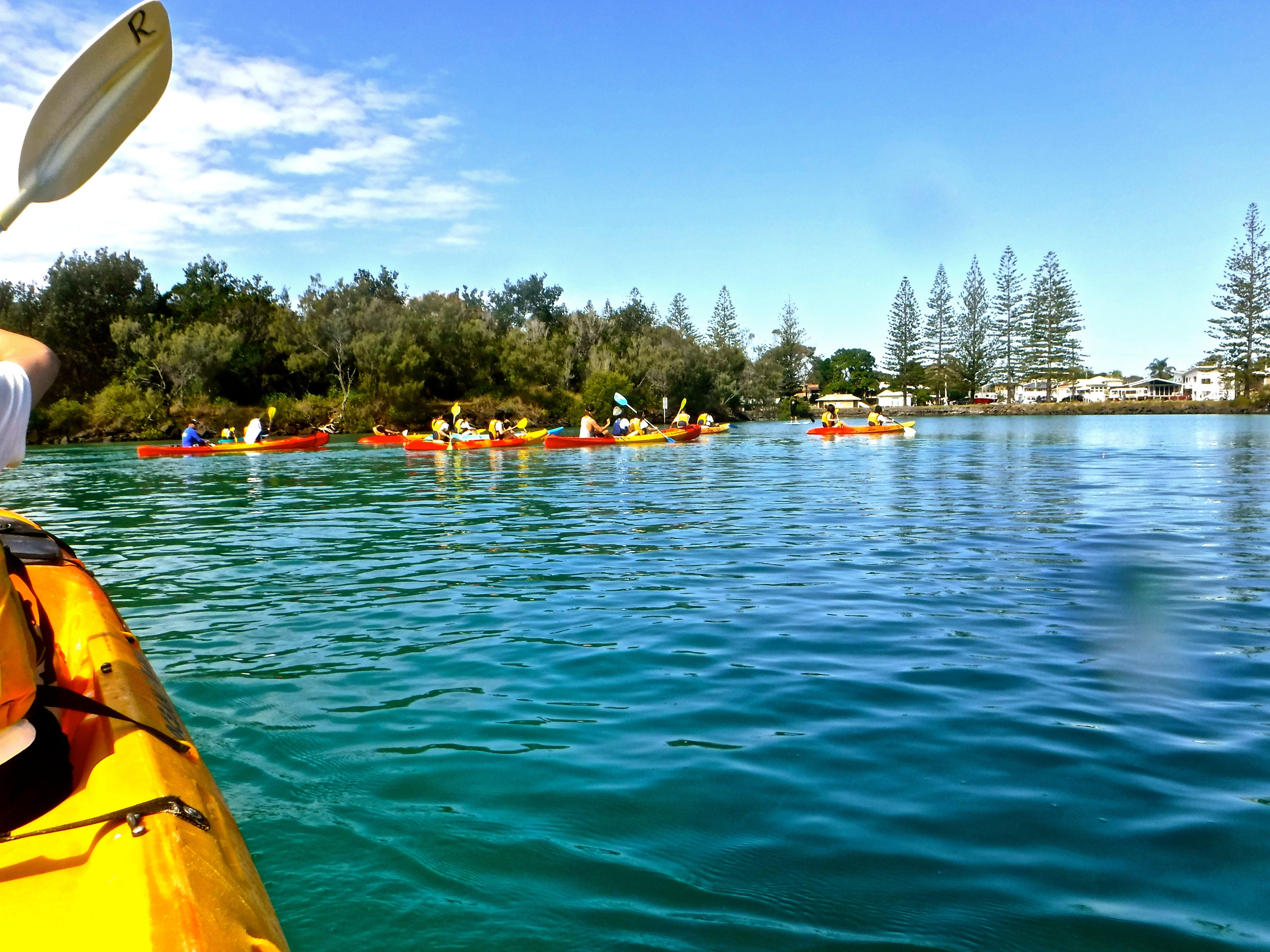 Byron Bay River Nature Kayak Tour - Accommodation Mt Buller