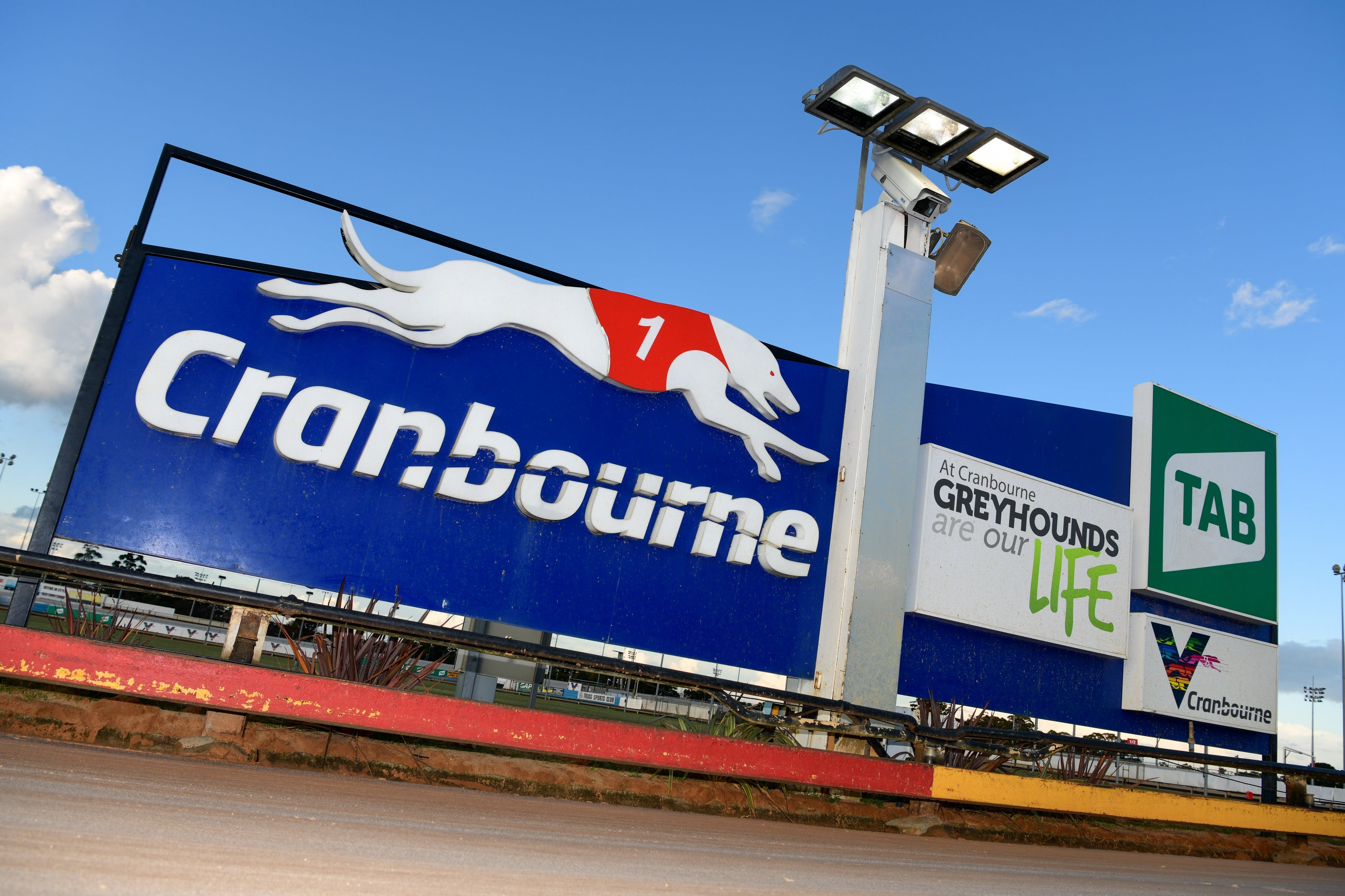 Cranbourne Greyhound Racing Club - Accommodation Mt Buller