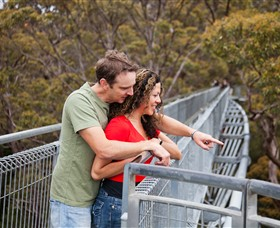Valley of the Giants Tree Top Walk - Accommodation Mt Buller