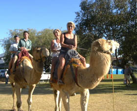 Calamunnda Camel Farm - Accommodation Mt Buller