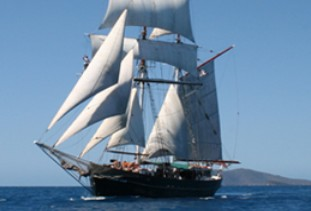 Australian Tallship Cruises - Accommodation Mt Buller