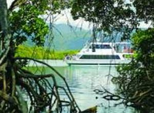 Cairns Harbour Cruises - Accommodation Mt Buller