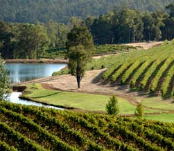 Brookhampton Estate Vineyard - Accommodation Mt Buller