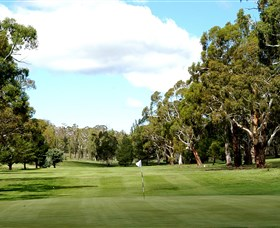 Cooma Golf Club - Accommodation Mt Buller