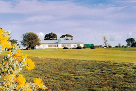 Lucindale Country Club