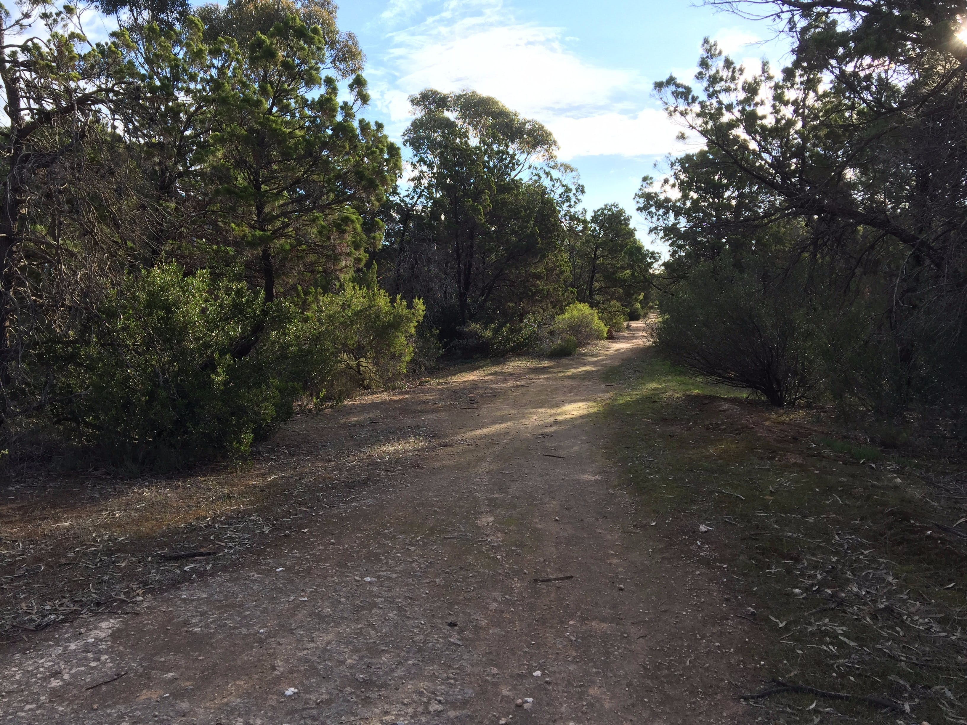 Victoria Park Moonta monthly walks - Accommodation Mt Buller