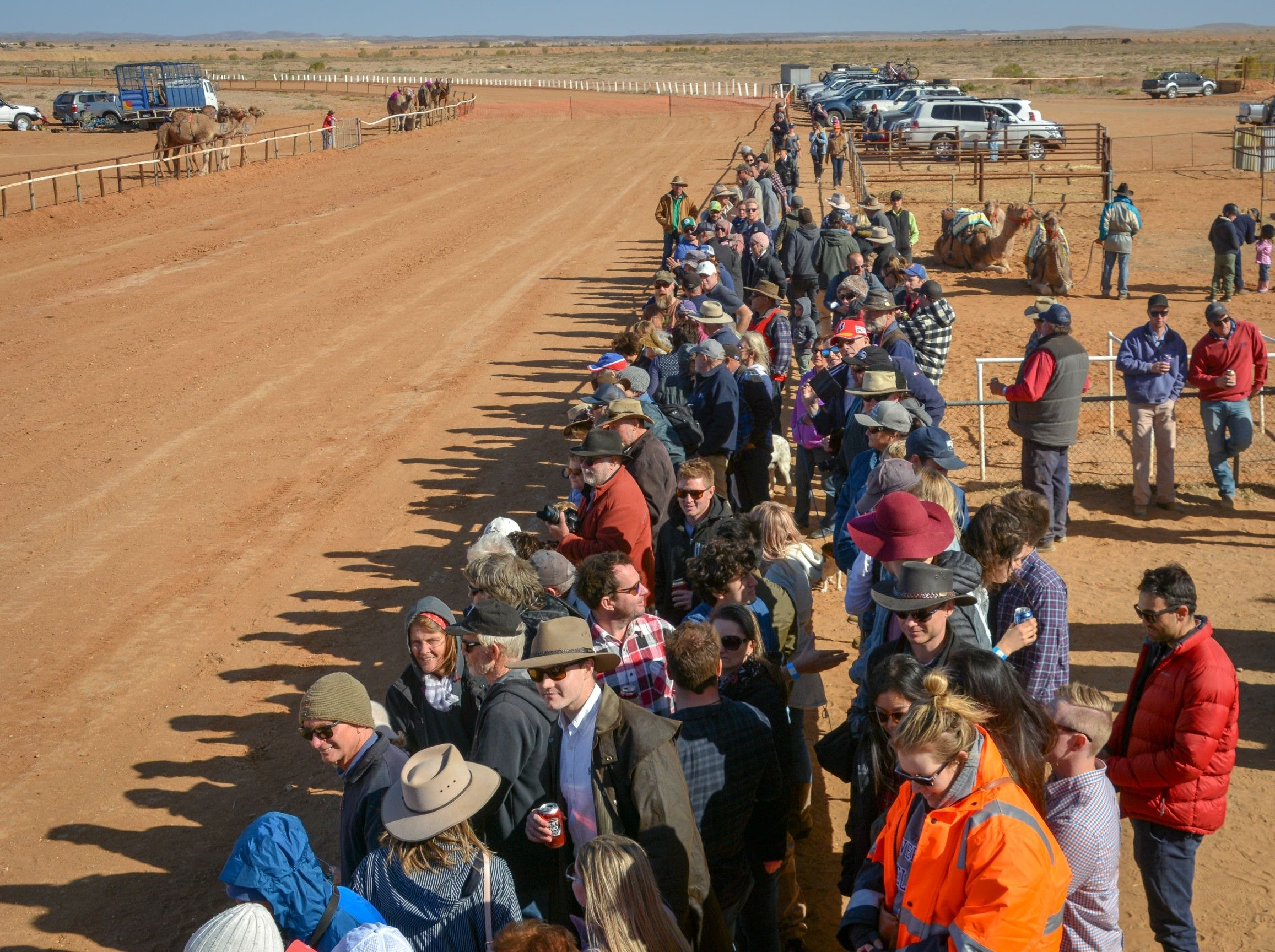 28th Marree Australasian CAMEL CUP 3 July 2021 - Accommodation Mt Buller