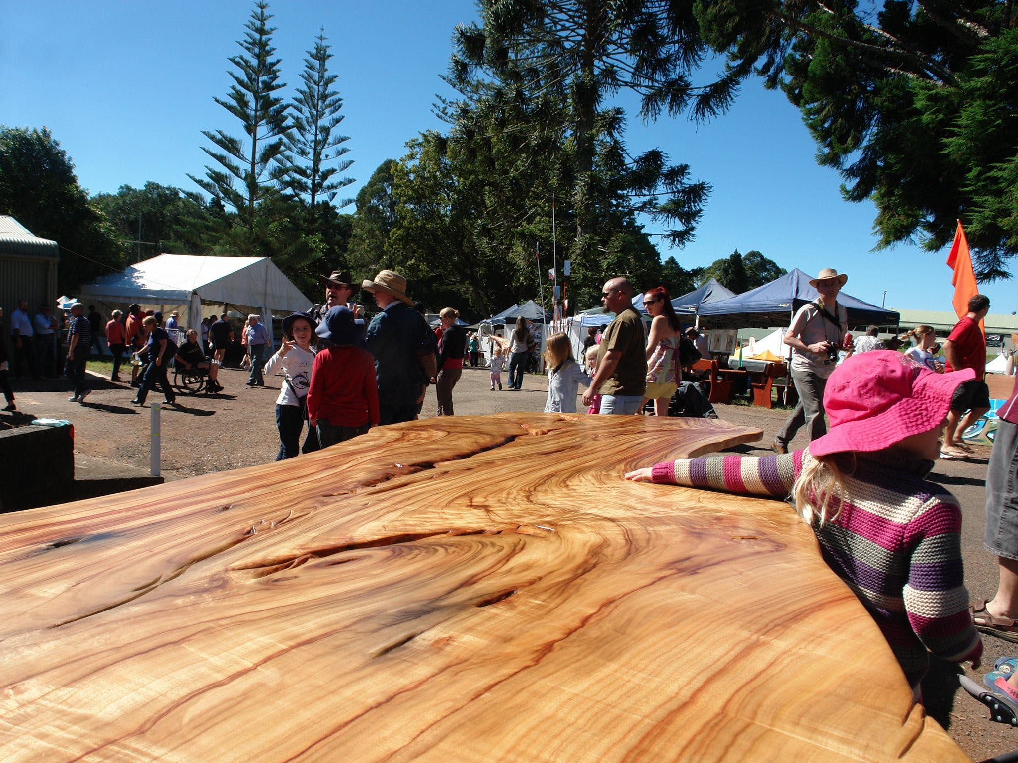 Maleny Wood Expo From Seed to Fine Furniture - Accommodation Mt Buller