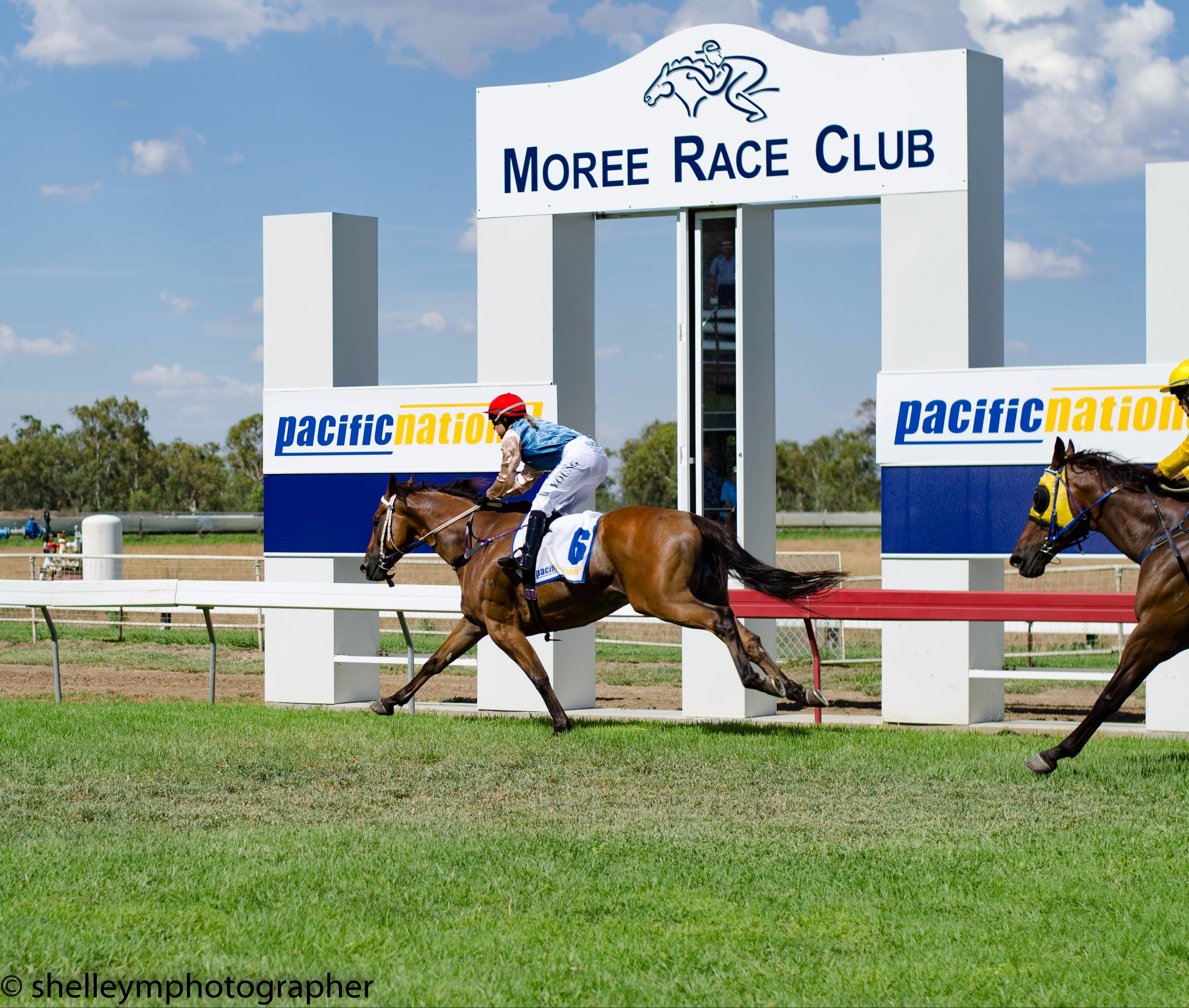 Moree Race Club TAB Race Day - Accommodation Mt Buller