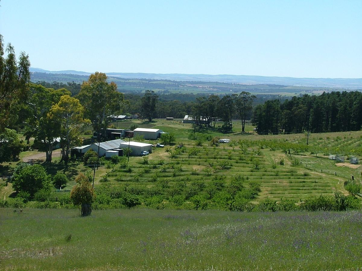 Taralee Orchards - Accommodation Mt Buller