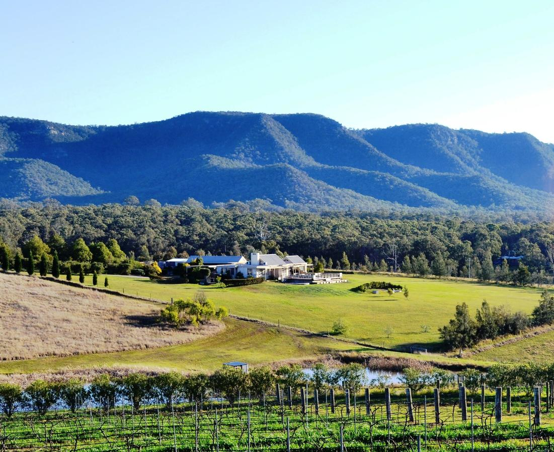 Grapevines Boutique Accommodation - Accommodation Mt Buller