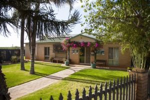 Capricorn Holiday Park - Accommodation Mt Buller