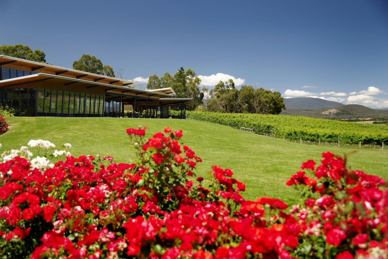Balgownie Estate Vineyard Resort  Spa - Accommodation Mt Buller